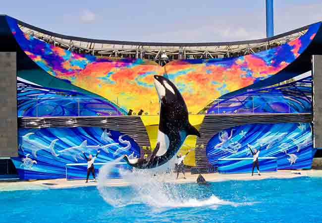 Los-parques-temáticos-de-Orlando-sea-world