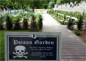 poison garden alnwick