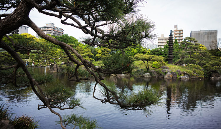 Jardines Kiyosumi