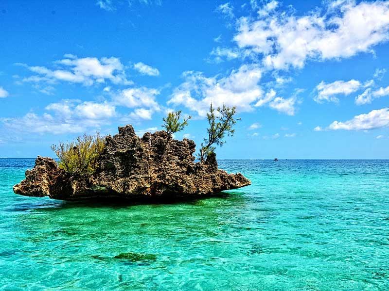 isla mauricio buceo